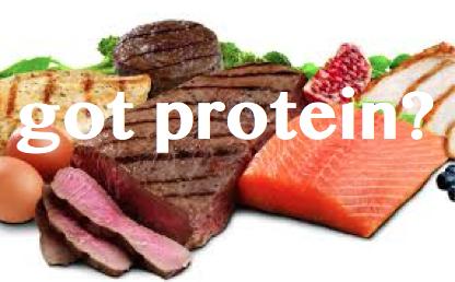 Got Protein?