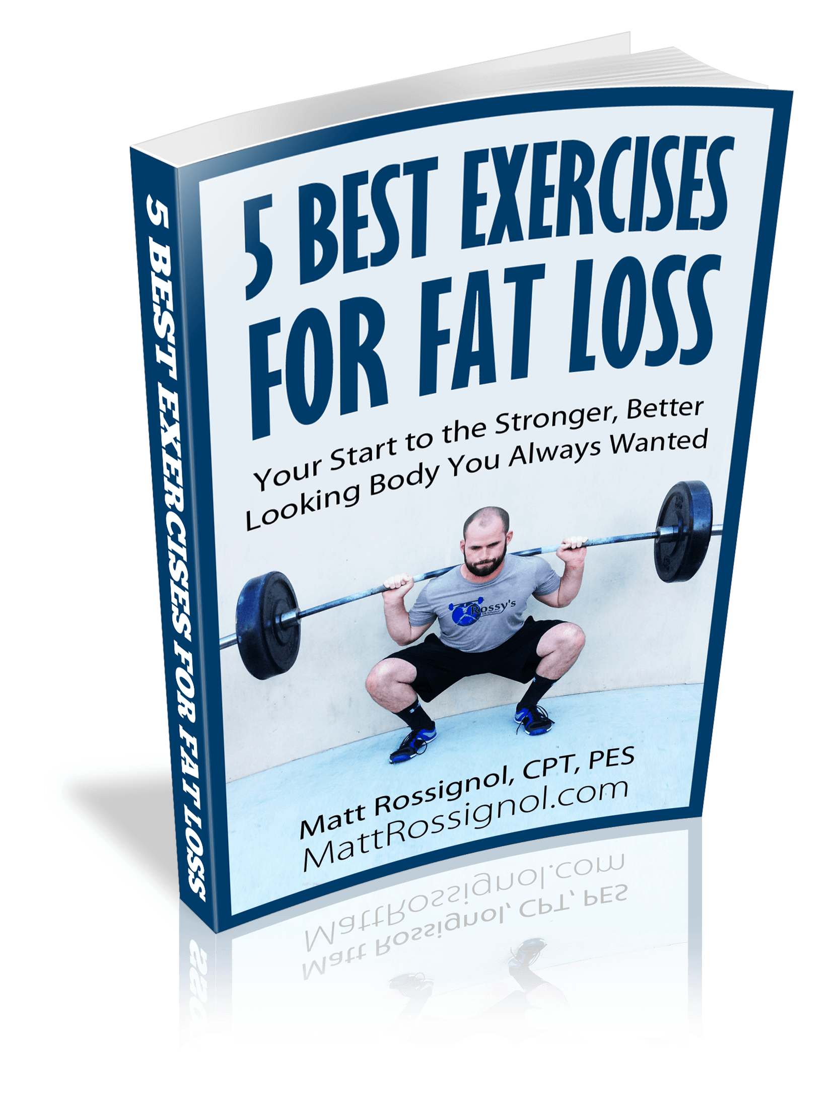 Fat Loss Ebook Cover 3d