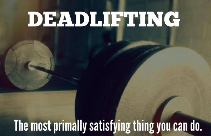 Your One Stop Shop Deadlift Guide